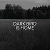 Tallest man on earth dark bird is home Mini