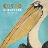 COSMO SHELDRAKE Pelicans We Mini
