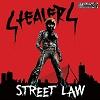 STEALERS Street Law Mini