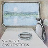 castlewoods-save-my-soul-mini
