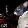 STRANGE BONES We The Rats Mini