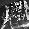 DELICATE STEVE Cowboy Stories Mini