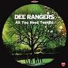 DEE RANGERS All You Need Tonight Mini