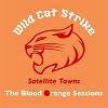 WILD CAT STRIKE Satellite Towns (Small Pond Session) Mini
