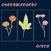 CHEERBLEEDERZ Disco Mini