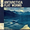 FLAT WORMS The Aughts Mini